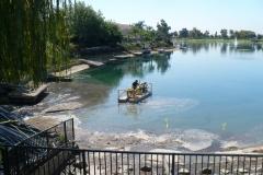 HOA_Lake_DinoSix