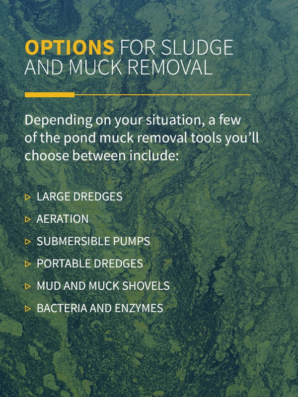 options for sludge & muck removal infographic