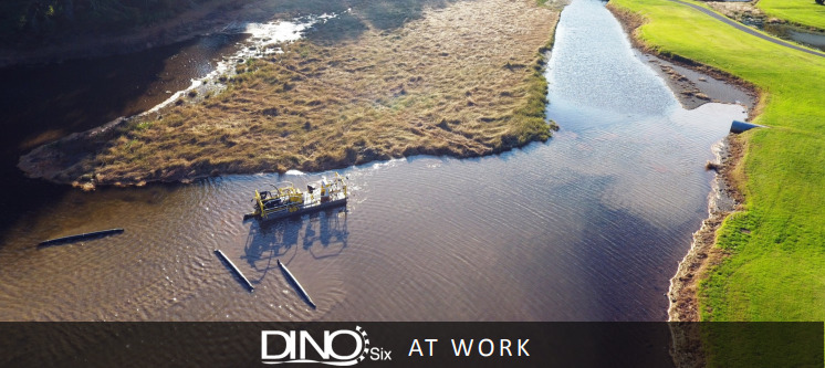 Before dredging with Dino6