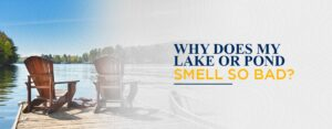 Why Does My Lake or Pond Smell So Bad?