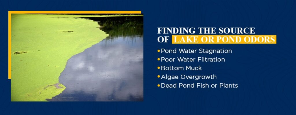 Finding the Source of Lake or Pond Odors